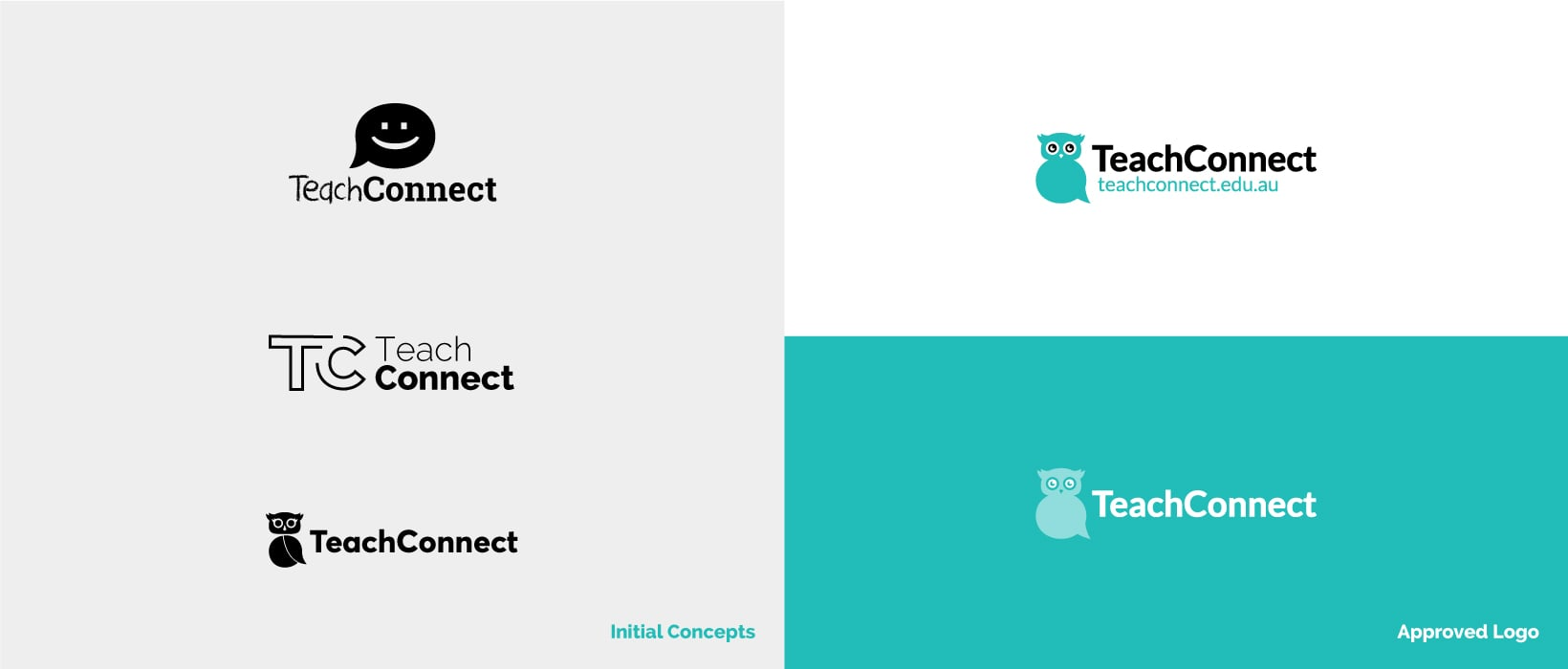 Hunted Hive - TeachConnect Branding Example